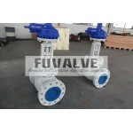 Ceramic Wedge Gate Valves