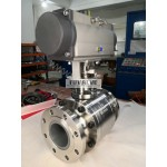 Ceramic ball valve for fly ash application