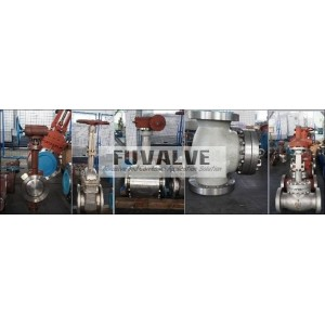 Cryogenic Valve Range
